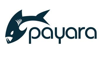 Payara logo Beginners Guides.jpg