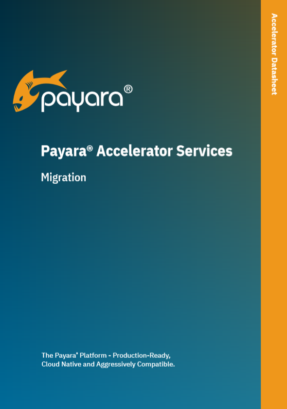 Payara 5 Data Sheet Image.png