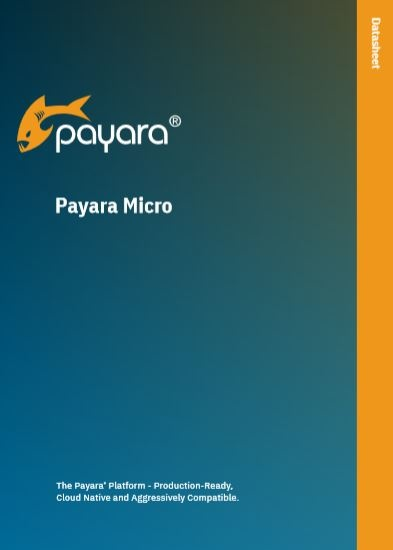 Payara-Micro-Data-Sheet.jpg