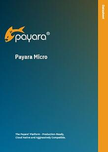 Payara-Micro-Data-Sheet.jpg