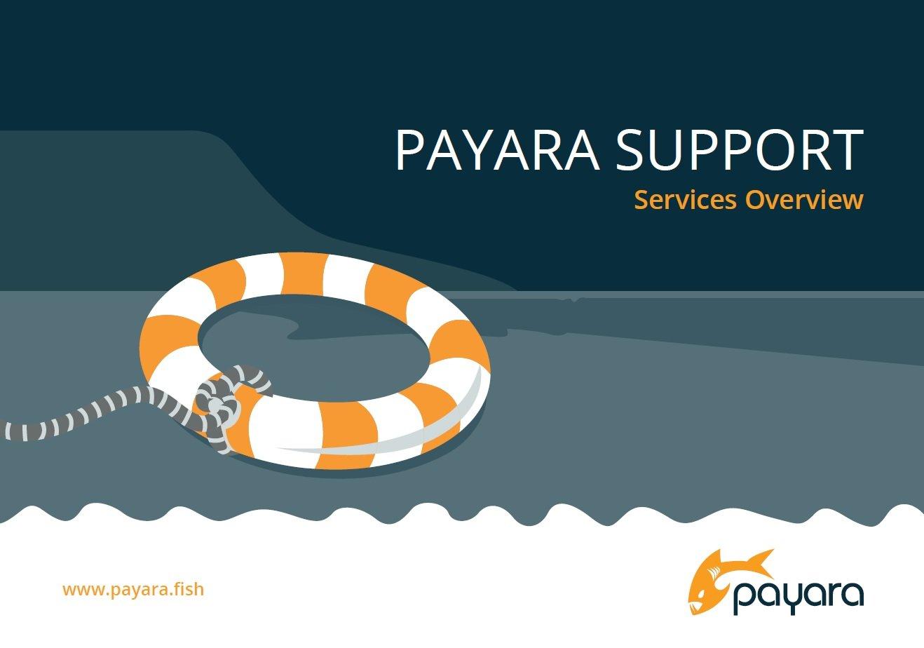 Payara_Brochure_Title_page.jpg