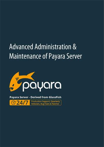 advanced-admin-and-maintenance-guide.jpg