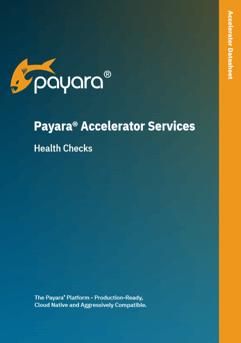 Payara 5 Data Sheet Image.png