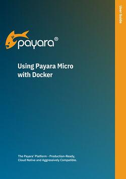 payara micro with docker