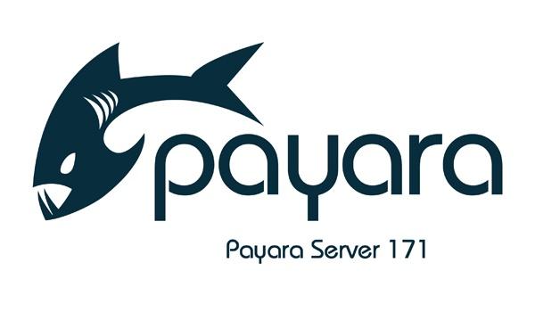 Payara-Server-171-small.jpg
